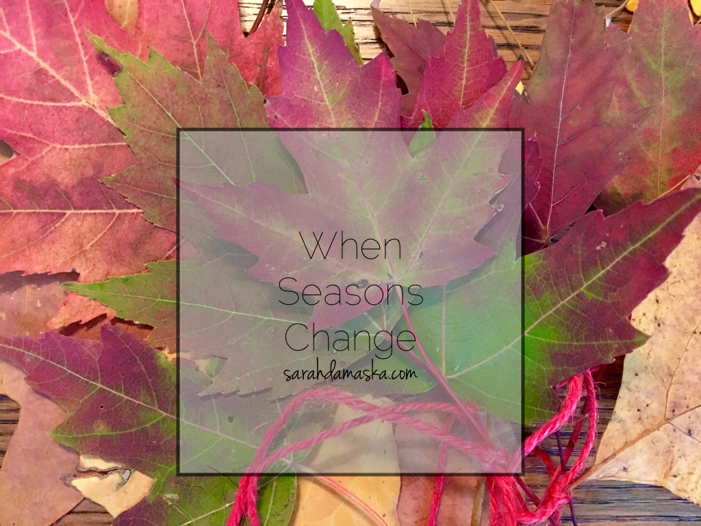when-seasons-change-001